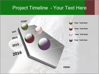 0000085224 PowerPoint Template - Slide 26