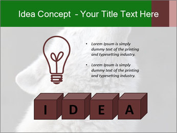 0000085224 PowerPoint Template - Slide 80