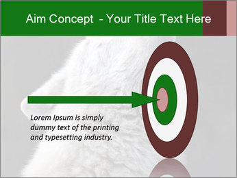 0000085224 PowerPoint Template - Slide 83