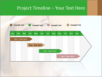 0000085239 PowerPoint Template - Slide 25