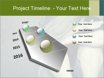 0000085240 PowerPoint Templates - Slide 26