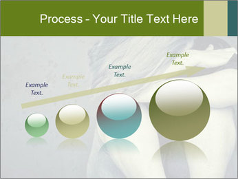 0000085240 PowerPoint Templates - Slide 87