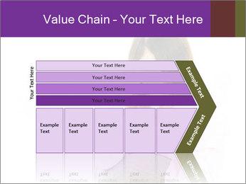 0000085241 PowerPoint Templates - Slide 27