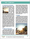 0000085243 Word Template - Page 3