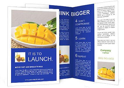 0000085245 Brochure Template