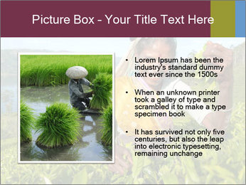 0000085252 PowerPoint Template - Slide 13