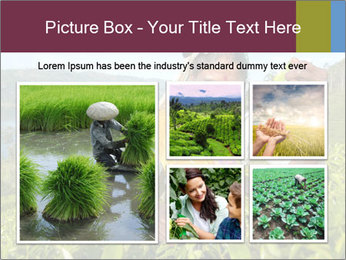 0000085252 PowerPoint Template - Slide 19