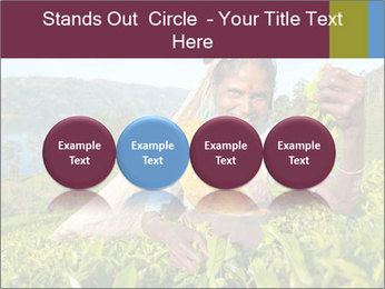 0000085252 PowerPoint Template - Slide 76