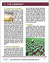 0000085252 Word Template - Page 3