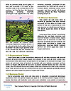 0000085252 Word Template - Page 4