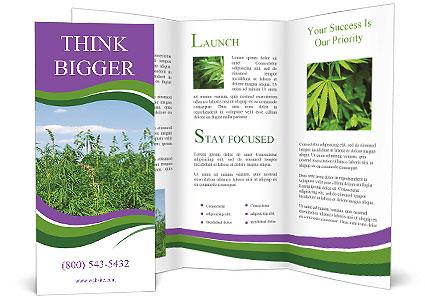0000085272 Brochure Templates