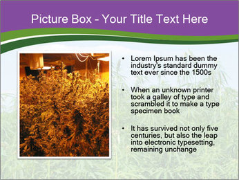 0000085272 PowerPoint Template - Slide 13