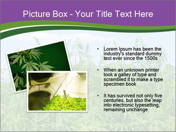 0000085272 PowerPoint Template - Slide 20