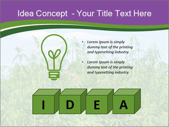 0000085272 PowerPoint Template - Slide 80