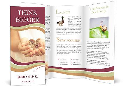 0000085275 Brochure Template