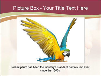0000085275 PowerPoint Template - Slide 15