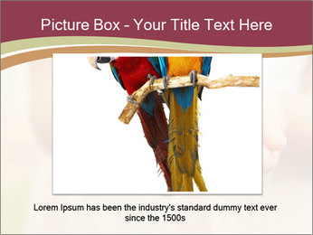 0000085275 PowerPoint Template - Slide 16