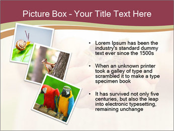 0000085275 PowerPoint Template - Slide 17