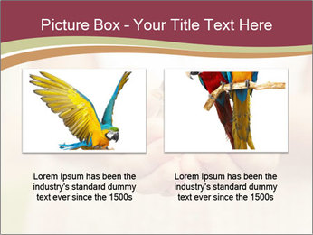 0000085275 PowerPoint Template - Slide 18