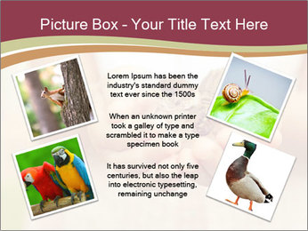 0000085275 PowerPoint Template - Slide 24