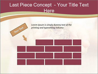 0000085275 PowerPoint Template - Slide 46