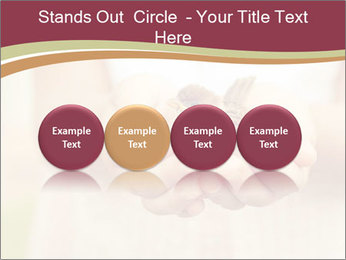0000085275 PowerPoint Template - Slide 76