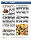 0000085277 Word Template - Page 3