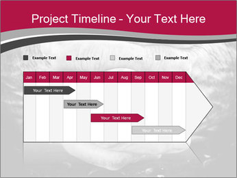 0000085291 PowerPoint Template - Slide 25