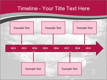 0000085291 PowerPoint Templates - Slide 28