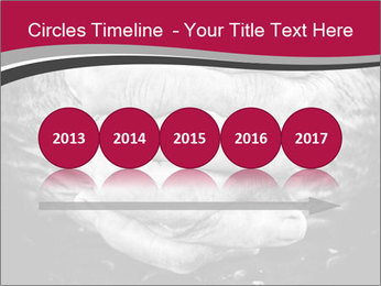 0000085291 PowerPoint Template - Slide 29