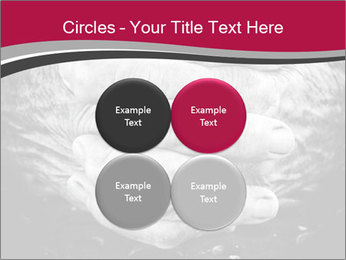 0000085291 PowerPoint Template - Slide 38