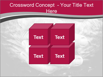 0000085291 PowerPoint Template - Slide 39