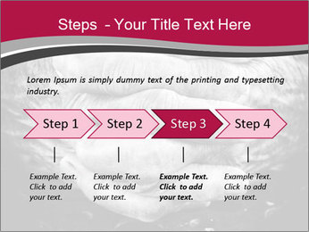 0000085291 PowerPoint Template - Slide 4