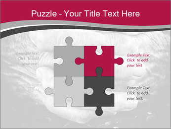 0000085291 PowerPoint Template - Slide 43