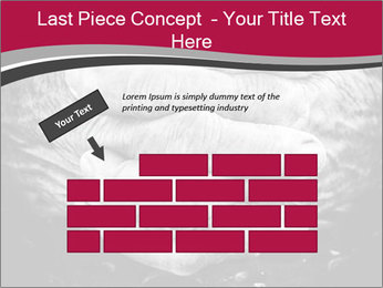 0000085291 PowerPoint Template - Slide 46