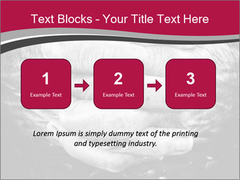 0000085291 PowerPoint Template - Slide 71