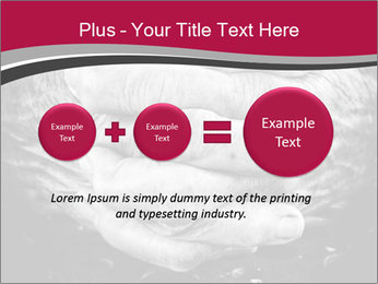 0000085291 PowerPoint Template - Slide 75