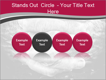 0000085291 PowerPoint Templates - Slide 76
