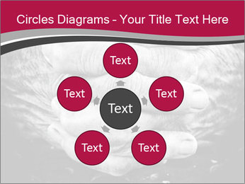 0000085291 PowerPoint Template - Slide 78