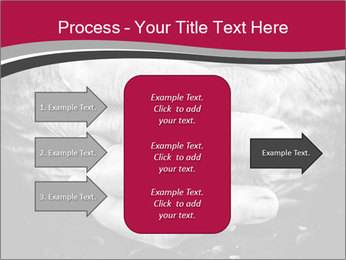 0000085291 PowerPoint Template - Slide 85