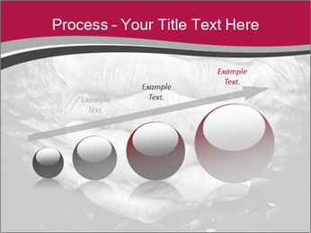 0000085291 PowerPoint Template - Slide 87