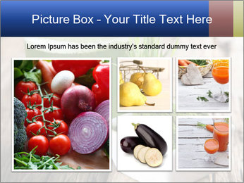 0000085297 PowerPoint Templates - Slide 19