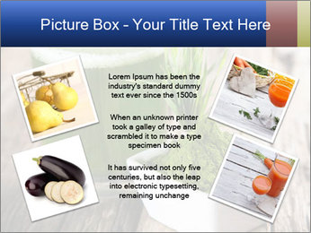 0000085297 PowerPoint Templates - Slide 24