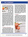0000085297 Word Template - Page 3