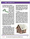 0000085301 Word Template - Page 3