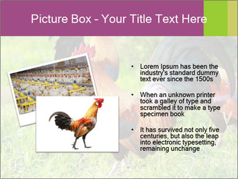 0000085303 PowerPoint Templates - Slide 20