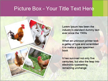 0000085303 PowerPoint Templates - Slide 23
