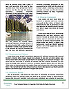 0000085304 Word Template - Page 4