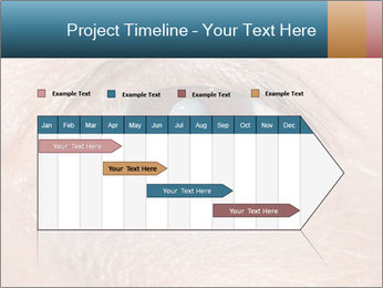 0000085306 PowerPoint Template - Slide 25