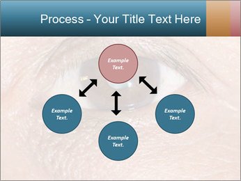 0000085306 PowerPoint Template - Slide 91
